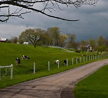 Spring in Amish Country. by Billlee