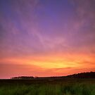 Blackwater Sunset - Blackwater NWR, Maryland by Matthew Kocin