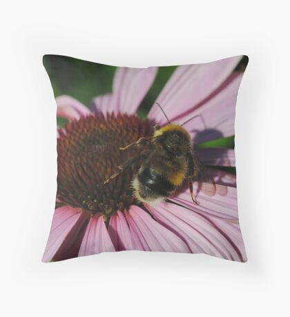 Bee and My Shadow................ Throw Pillow