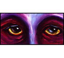 Purple Eyes Photographic Print