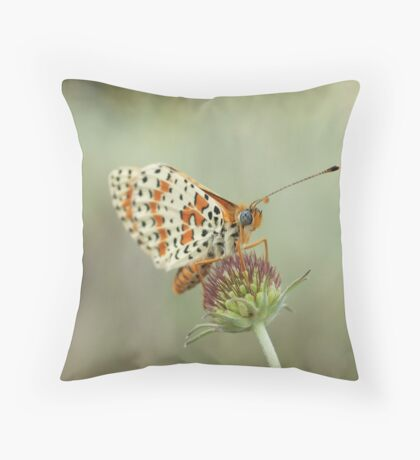 Spotted Fritillary Throw Pillow
