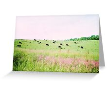 Grazing in the field Greeting Card