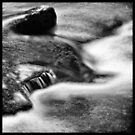 In the calm waters by Geraldine Lefoe