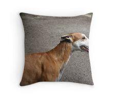 Severi the Galgo Throw Pillow