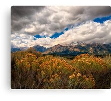 Wild Flowers and Teton Mountains III Canvas Print