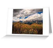 Wild Flowers and Teton Mountains III Greeting Card
