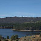 Myponga Reservoir by Debra LINKEVICS