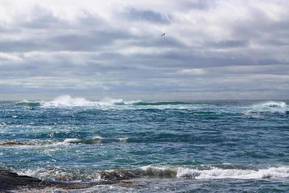 Emerald Sea by Peter Waller