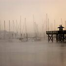 Foggy Marina Morning, Olympia Washington USA by nwexposure