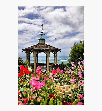 A Garden by the Sea Photographic Print