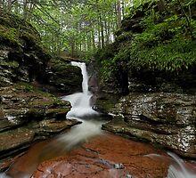 Adams Falls by Tim Devine
