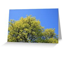 Yellow and Blue Greeting Card