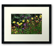 A Pretty Flower Setting in the Garden Framed Print
