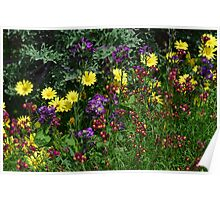 A Pretty Flower Setting in the Garden Poster