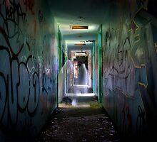 The long walk home by Steph Enbom