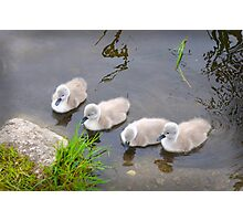 Babies R Us Photographic Print