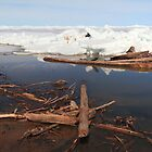 Ice on lake III by zumi