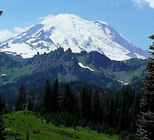 Mountain Majesty - Mt. Rainier From Chinook Pass, WA by Rebel Kreklow