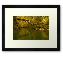 Footbridge Landscape Framed Print