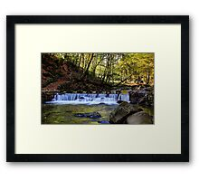 Small Steps In Tollymore Framed Print