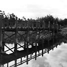 Across Bridge by Karen E Camilleri