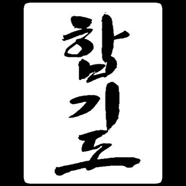 Hapkido by Bobby Alipanahi