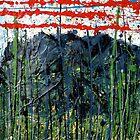 red stripes - Comboyne plateau NSW, Australia by Bubaloo Fahy