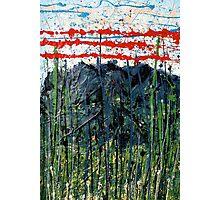 red stripes - Comboyne plateau NSW, Australia Photographic Print