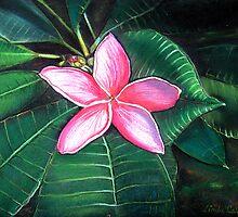 Frangipani Flower by © Linda Callaghan