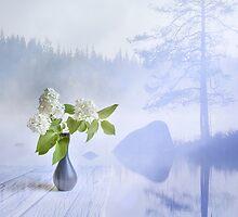 White Syringa by Veikko  Suikkanen