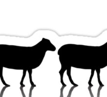 (r)Evolution Sticker
