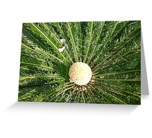 exploding_fruit_surrounded_by_spiralling_green_leaves Greeting Card