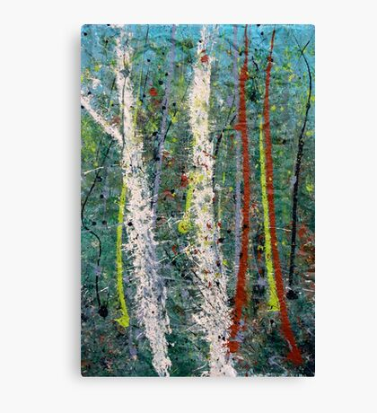 the welcome home - Blue quandongs in forest 1. Main Arm valley NSW, Astralia Canvas Print