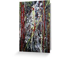 red forest with waterfall - Main Arm valley NSW, Australia Greeting Card