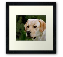 Portrait of Kasey Framed Print