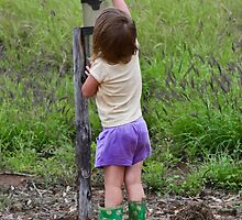 Checking for Rain by Sally Werner