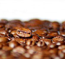 coffee beans by Klaus Vartzbed