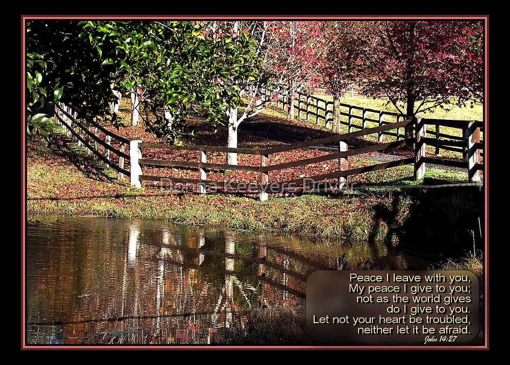 ~ Let not your heart be troubled ~ by Donna Keevers Driver