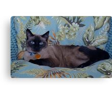 Beautiful Bella Canvas Print
