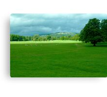 Chatsworth Estate View. Canvas Print