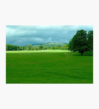Chatsworth Estate View. Photographic Print