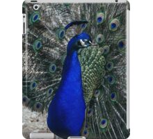 Beautiful Peacock  iPad Case/Skin