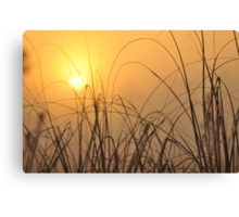 Everglades Sunrise, As Is Canvas Print
