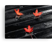 Three Red Leaves after Rain Canvas Print