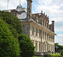 Another Shot Of Kingston Lacy by lynn carter