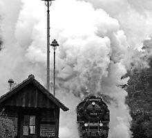 Wernigerode Westerntor by Gerry  Balding