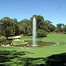 Landscape with Fountain in Kings Park,Perth WA. by David  Barker