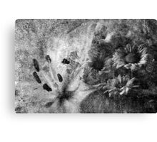 Flowers Of Stone Canvas Print