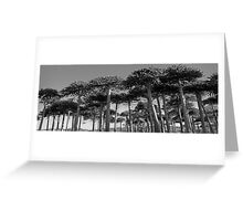 Angled Monkey Puzzle Trees Greeting Card