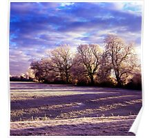 Frosty trees in hertfordshire Poster
